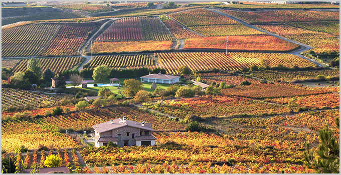 spanish wine country