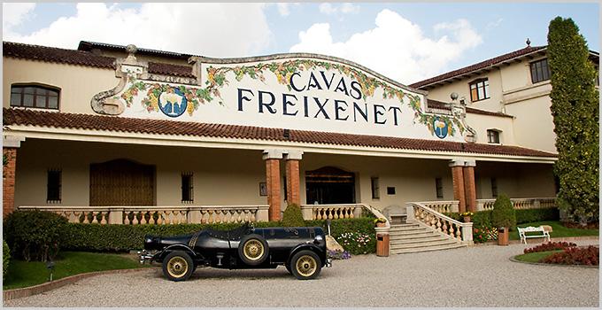 Cava wine region